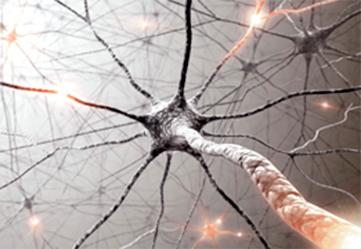 Заболевания переферической нервной системы