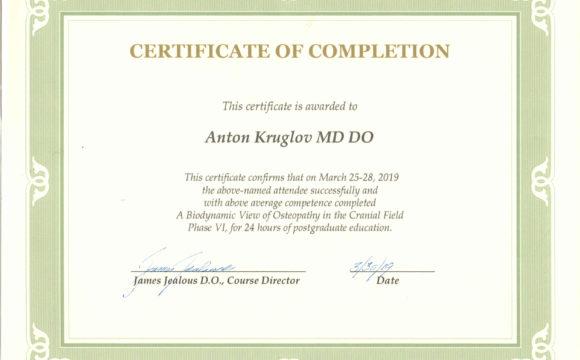 Специалисты клиники прошли обучение на семинаре цикла по биодинамической остеопатии